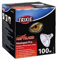 Лампа галогеновая для обогрева террариума  97х91мм, 100вт
