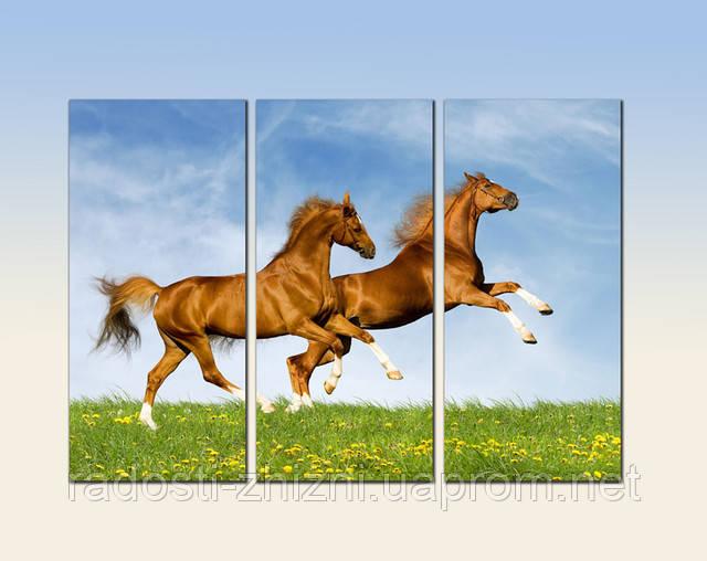 "Модульная картина ""Дикие лошади"". Картина на холсте."