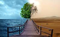 """Модульная картина """"Tree"""". Ультрафиолетовая печать на холсте., фото 1"""
