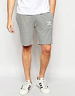 Шорты Adidas серые белый принт
