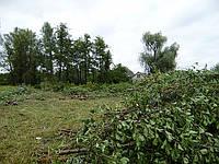Расчистка участка от деревьев Уборка участка Киев