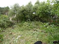 Очистка участка от сорняков