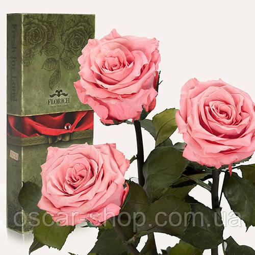 Три долгосвежих розы Florich в подарочной упаковке  - РОЗОВЫЙ КВАРЦ (7 карат на коротком стебле)
