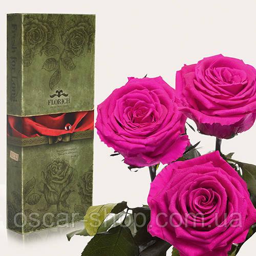 Три долгосвежих розы Florich в подарочной упаковке  - МАЛИНОВЫЙ РОДОЛИТ (7 карат на коротком стебле)
