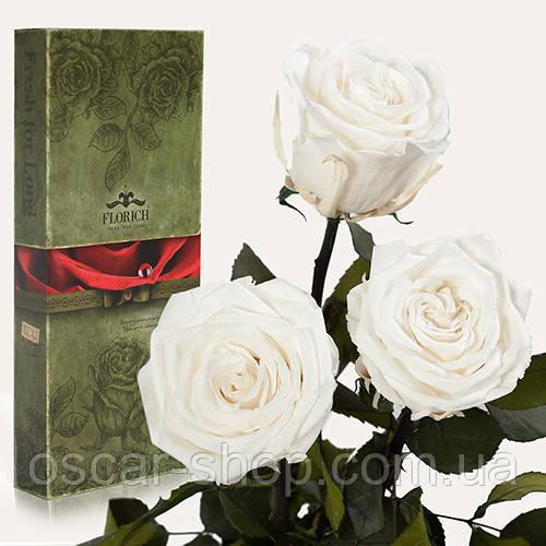 Три долгосвежих розы Florich в подарочной упаковке  - БЕЛЫЙ БРИЛЛИАНТ (7 карат на коротком стебле)