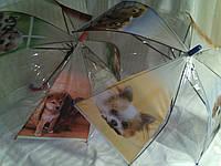 Зонт детский прозрачный с собачками