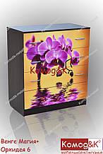 Комод ДСП 4 ящики Венге Магія +Орхідеї