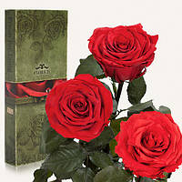 Три долгосвежих розы Florich в подарочной упаковке  - КРАСНЫЙ РУБИН (7 карат на среднем стебле)