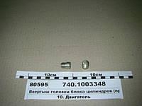 Ввертыш головки блока цилиндров (пр-во КАМАЗ), 740.1003348