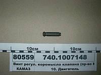 Винт регул. коромысла клапана (пр-во КАМАЗ), 740.1007148