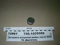 Заглушка шатунной шейки (пр-во КАМАЗ), 740.1005086
