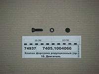 Клапан (болт) форсунки охлаждения поршня (пр-во КАМАЗ), 7405.1004066