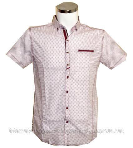 Рубашка мужская Punto батал