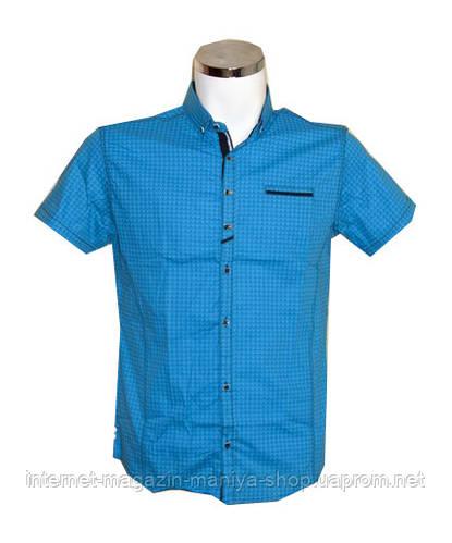 Рубашка мужская Punto батал голубая