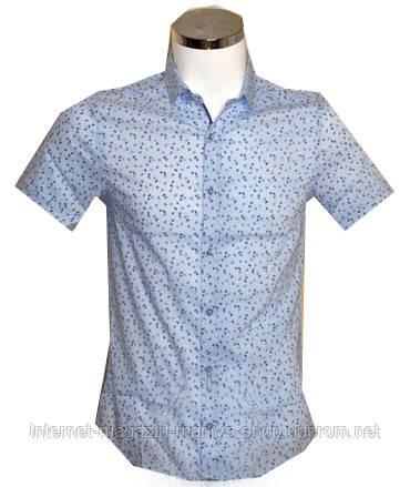 Рубашка мужская Desibel приталенный крой голубая