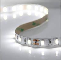 Светодиодная лента белая 60св/м SMD 5630 IP33 холодный свет, 5м