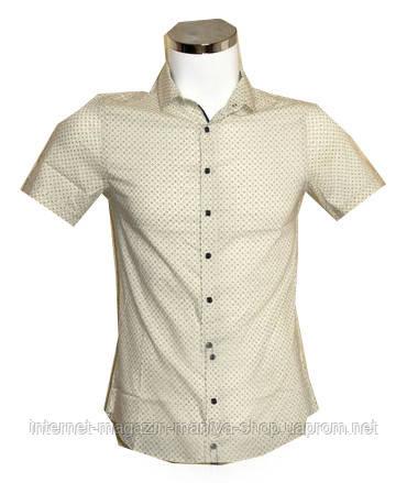 Рубашка мужская Desibel батал