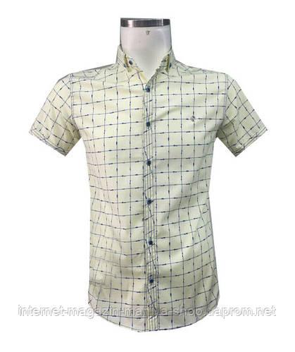 Рубашка мужская Панто норма приталенный крой