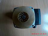 Циркуляционный насос Grundfos UPS 25-60, фото 2