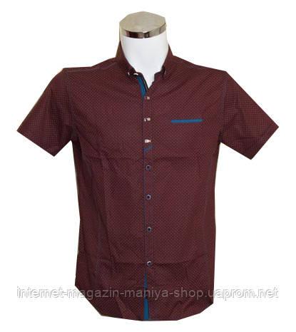 Рубашка мужская Punto батал приталенный крой