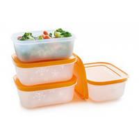 Охлаждающий лоток-набор из 4х контейнеров! Сохраните лето в вашем холодильнике!