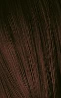 Тонирующий мусс для волос Igora Expert Mousse 4-68 Средне коричневый шоколадно красный 100 мл