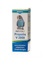 Canina Petvital V2000 Propolis Кормовая добавка для укрепления иммунной системы птиц