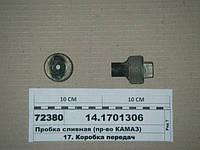 Пробка сливная (пр-во КАМАЗ), 14.1701306