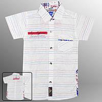 Рубашка детская (Белый с красным)