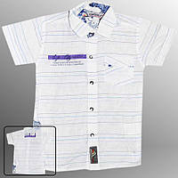 Рубашка детская (Белый с фиолетовым)