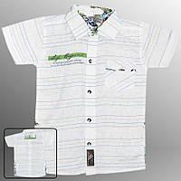 Рубашка детская (Белый с зеленым)