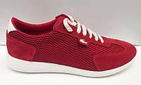 Кроссовки подростковые/женские Lacoste красные, серые La0005