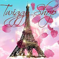 Twiggy Shop - Интернет-магазин для современных людей, предпочитающих высокое качество и изысканность во всём