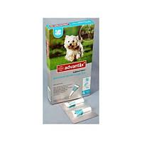 Advantix (Адвантикс) от блох и клещей для собак от 4 до 10 кг
