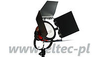 Лампа постоянного света SPOT LIGHT, RED HEAD 800W, модель DSR800E FV