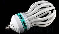 Лампа постоянного студийного света  200 ВТ/800 ВТ 5500K E27 Lighting/Lensso