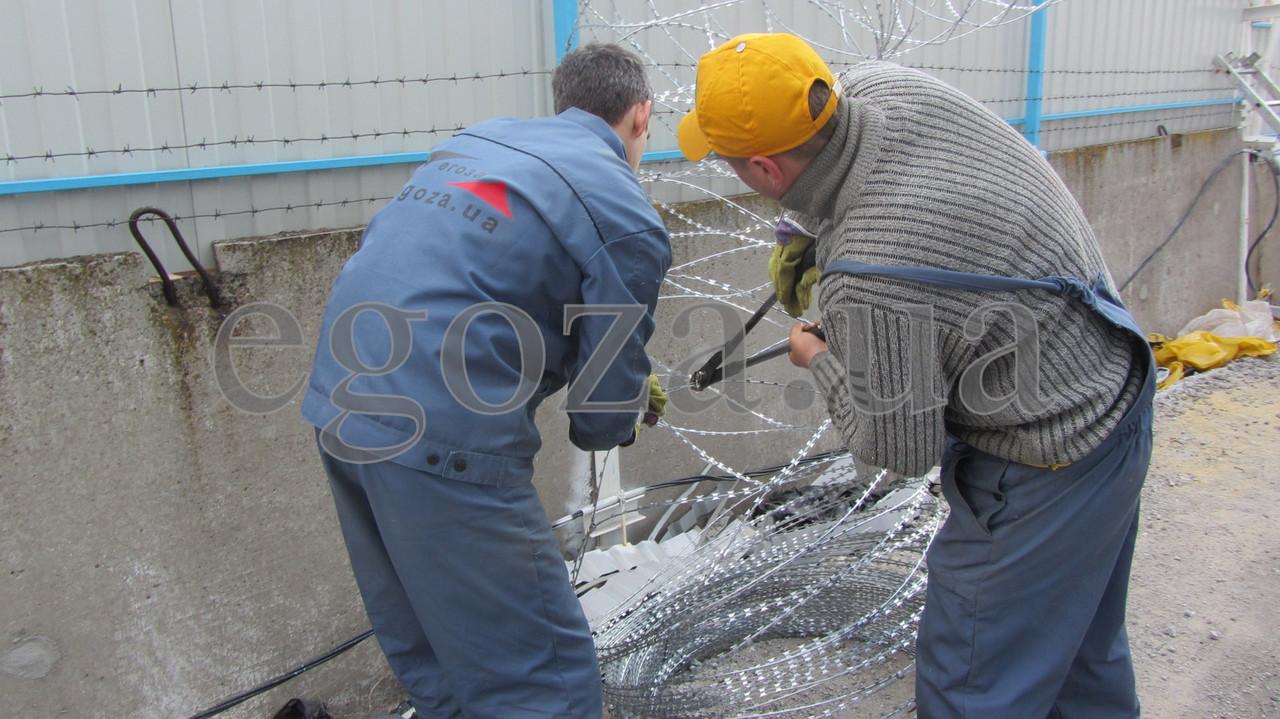 Егоза Кайман 900/7 заграждение колюче-режущее спиральное