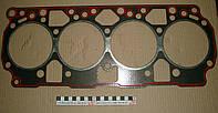 Прокладка головки блока Д-240-245 (герметик) 50-1003020-А-5