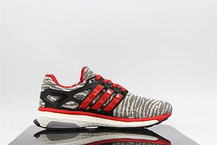 Кроссовки мужские Adidas Energy Boost 2.0 / ADM-746 (Реплика)