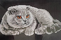 """Схема для вышивки бисером """"Вислоухий кот"""""""