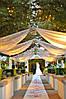 Украшение зала на свадьбу, фото 2