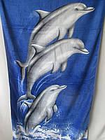 Пляжное полотенце на море., фото 1