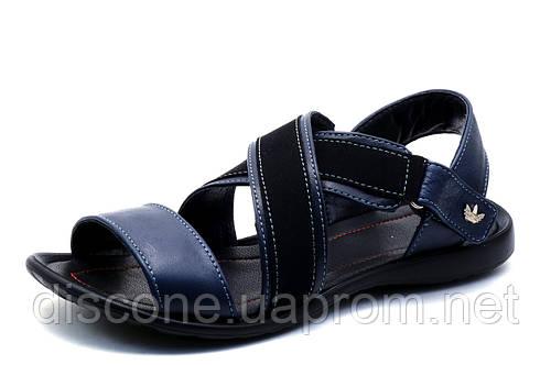 Сандалии мужские, Adidas, кожаные, синие с черным