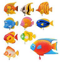 Водоплавающая игрушка 2008 D-2103-2105 рыбки KHT/52-0