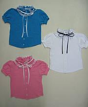 Блуза арлекина c коротким рукавом фуликра кружево
