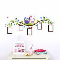 """Виниловая наклейка на стену """"Две совы и рамки для фото"""""""