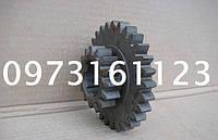 Шестерня КПП А25.37.229 (Т-25, Д-21) н/о z=15, z=29