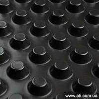 Гидроизоляционная шиповидная мембрана                    TERRAPLAST PLUS L8 1.5*20м гідроіз.для фун