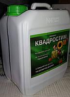 Квадростим, фото 1