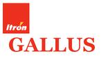 Счетчик газа мембранный Itron Actaris Gallus